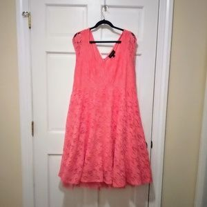 Lace Fit Flare Coral Pink Lane Bryant Dress 18/20